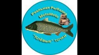 Все о реальной рыбалка
