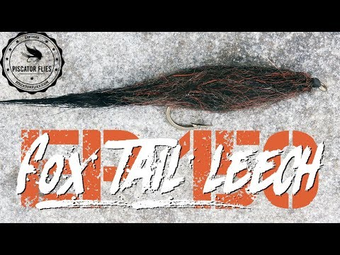 Fox Tail Leech