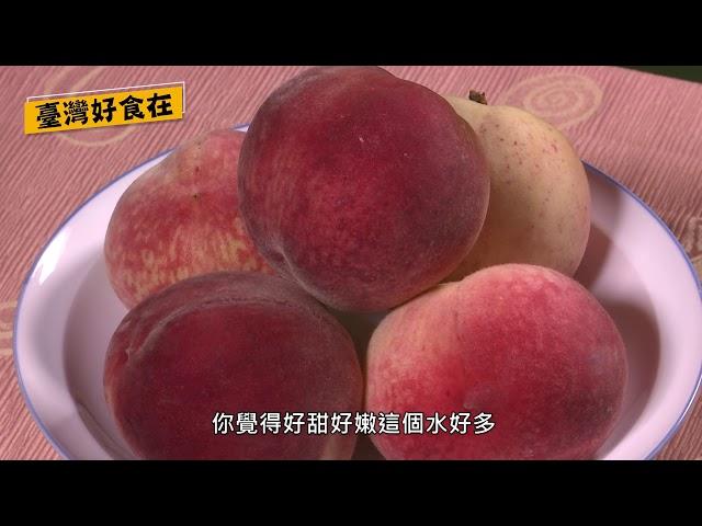 臺灣好食在-鄭文燦市長激推拉拉山水蜜桃!