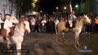 preview picture of video 'Desfile de  Caballos Jinetes Carruajes Tropillas'