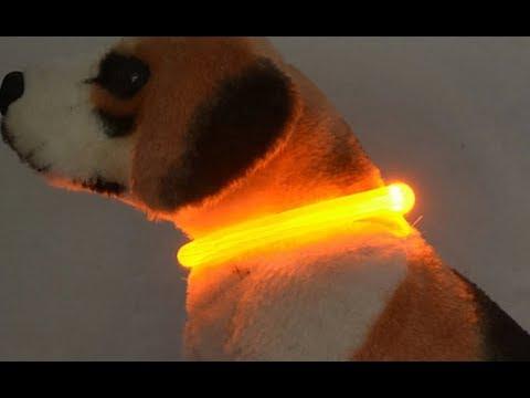 Аккумуляторный светящийся ошейник для собак и кошек