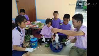 สพป.เชียงใหม่ เขต 3 โรงเรียนชุมชนบ้านแม่สูนหลวง สาขาบ้านเด่นเวียงไชย (ไร่ส้ม)