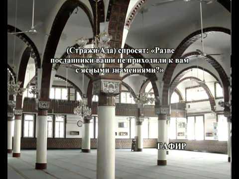 Сура Толпы <br>(аз-Зумар) - шейх / Мухаммад Айюб -