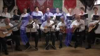 preview picture of video 'Asociación de Coros y Rondalla de Miguelturra'