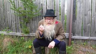 Психология Дед Архимед. Песенка про жопу. Благодарен за репосты
