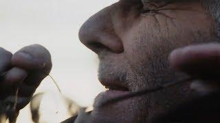 FOLKSTONE - ELICRISO (C'ERA UN PAZZO) [OFFICIAL VIDEOCLIP]
