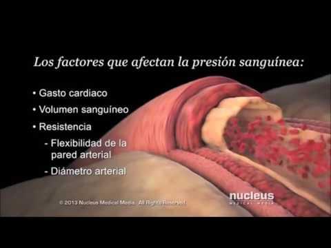 Remedios caseros para el embarazo la hipertensión