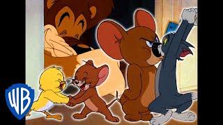 Tom und Jerry auf Deutsch 🇩🇪   Jerrys Superteam   WB Kids