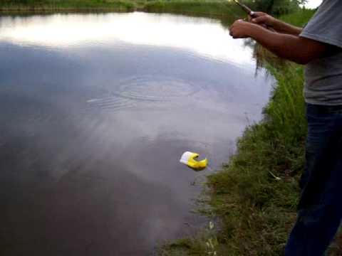 pond fishing at Chatfield Res.