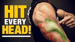 Exercises for Triceps for Every Head (HIT EM ALL!)