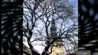 preview picture of video 'TALLIN YURY BASHKIN LARUSSIA Estonia'