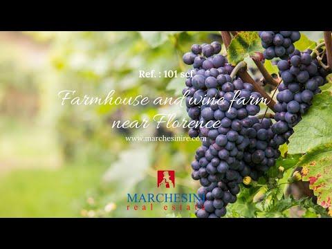 Agriturismo e azienda vinicola vicino Firenze