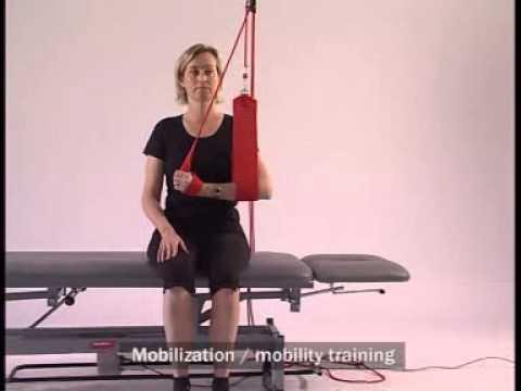 Program szkolenia mięśni w siłowni