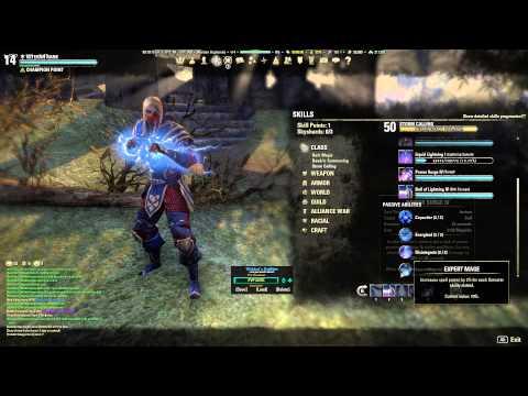Critique my (planned) Sorcerer build. — Elder Scrolls Online