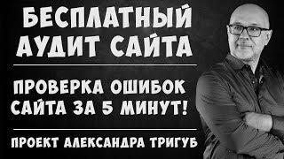 Бесплатный аудит сайта! SEOWins.ru - Экспресс аудит сайта!