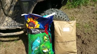 Planting Sunflower Food Plot & Mythbusting Seed Differences Part 1 6-7-16