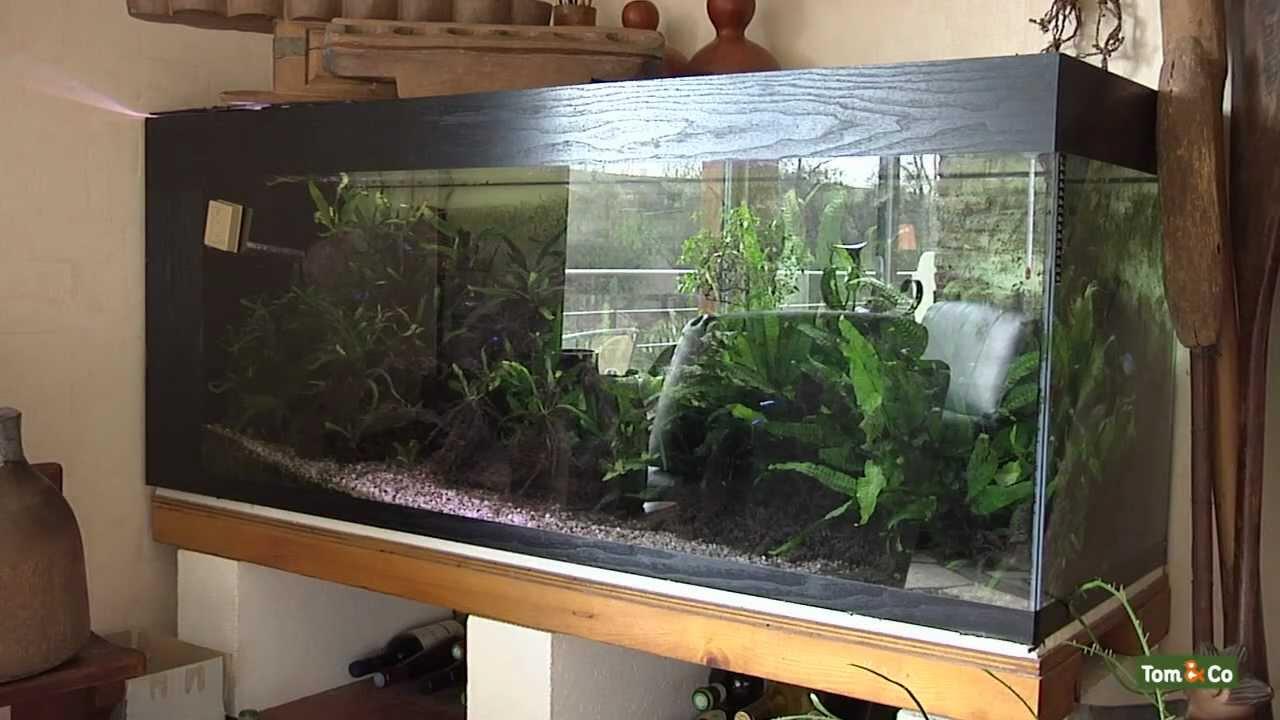 Het warmwateraquarium