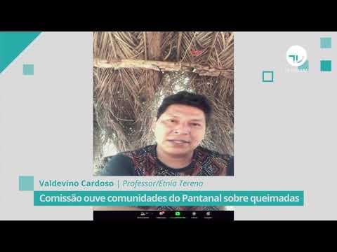 Comissão ouve comunidades do Pantanal sobre queimadas - 01/10/20