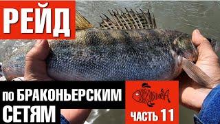 Нарушение правила ведения рыболовного хозяйства и рыболовства