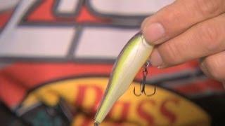 Science Behind Bass Fishing
