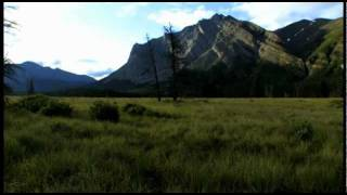 Banff National Park  - The Missing Link