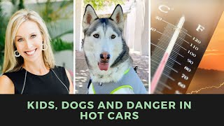 Kids, Dogs, and Danger in Hot Cars