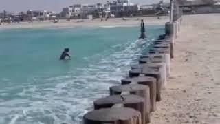 faze tari surf in cap