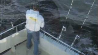 Chesapeake Bay Fishing Action #1