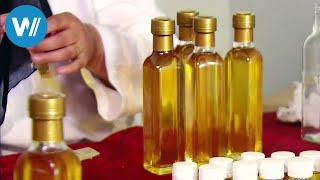 Arganöl - Marokkos weißes Gold (360° - GEO Reportage)