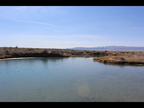 Horseshoe Springs Skull Valley Utah