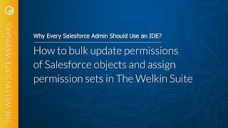 How to bulk update permissions of Salesforce objects and assign permission sets in The Welkin Suite