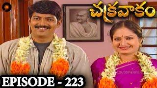 Episode 223  | Chakravakam Telugu Daily Serial