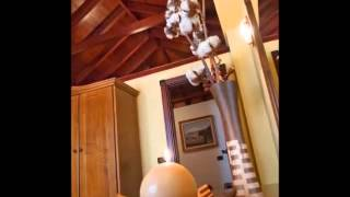Video del alojamiento Casa La Furnia