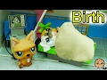 Download Lagu Baby Puppy At Hospital - LPS Mommies Series Littlest Pet Shop Part 72 Cookieswirlc Mp3 Free