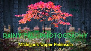 Rainy Fall Photography - In Michigans U.P.