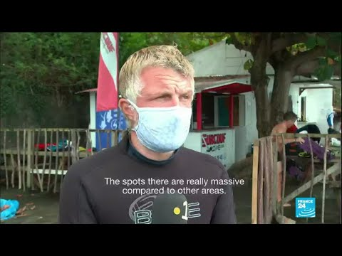 Water pollution: Martinique's coral reef threatened by bacterial infection