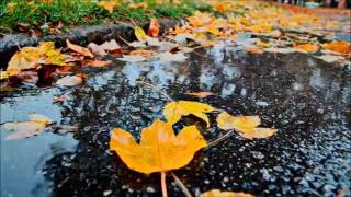 Dire Straits~Water of Love {Nature Video With Lyrics}HD