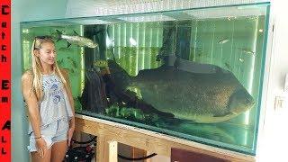 FISH TOO BIG To Keep In HOME AQUARIUM!