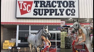 I TOOK MY HORSE INTO A TRACTOR SUPPLY STORE!