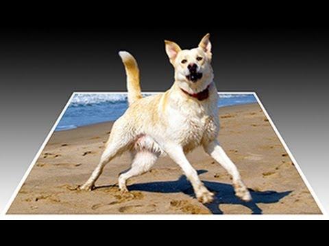 3d pop out dog using adobe photoshop tutorials by blue lightning tv photoshop