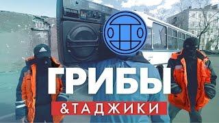 """Таджики перепели """"Грибы - Тает Лёд"""" // Пародия"""