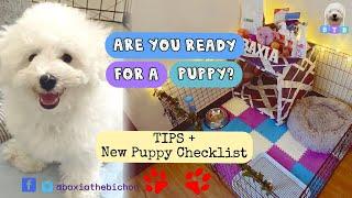 Ultimate Puppy Checklist + TIPS   Bichon Frise (TAGALOG)   Baxia the Bichon