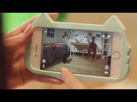 Petcube Play - Interactive Wi-Fi Pet Camera Video