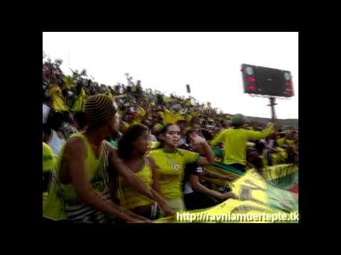 """""""Señores Yo Soy De Real Cartagena"""" Barra: Rebelión Auriverde Norte • Club: Real Cartagena"""