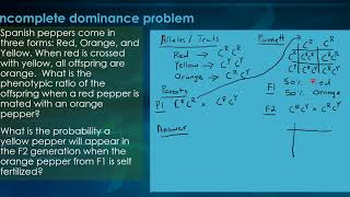 Solving Genetics Problems - Incomplete Dominance
