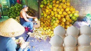 Khám Phá Cơ Sở Gọt Dừa ở Sài Gòn Hé Lộ Nhiều Bất Ngờ ít Người Biết | Street Food Of Saigon