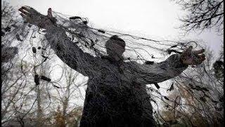 Рыбнадзор.Кругом одни сети.