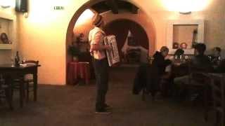 preview picture of video 'Lollo e la sua pazza fisarmonica ...'