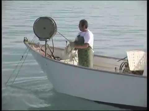 Video inverno da pesca su una grande pertica