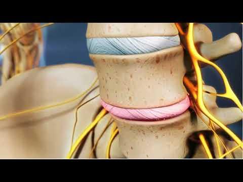 Dolor en la espalda y el abdomen de 37 semanas